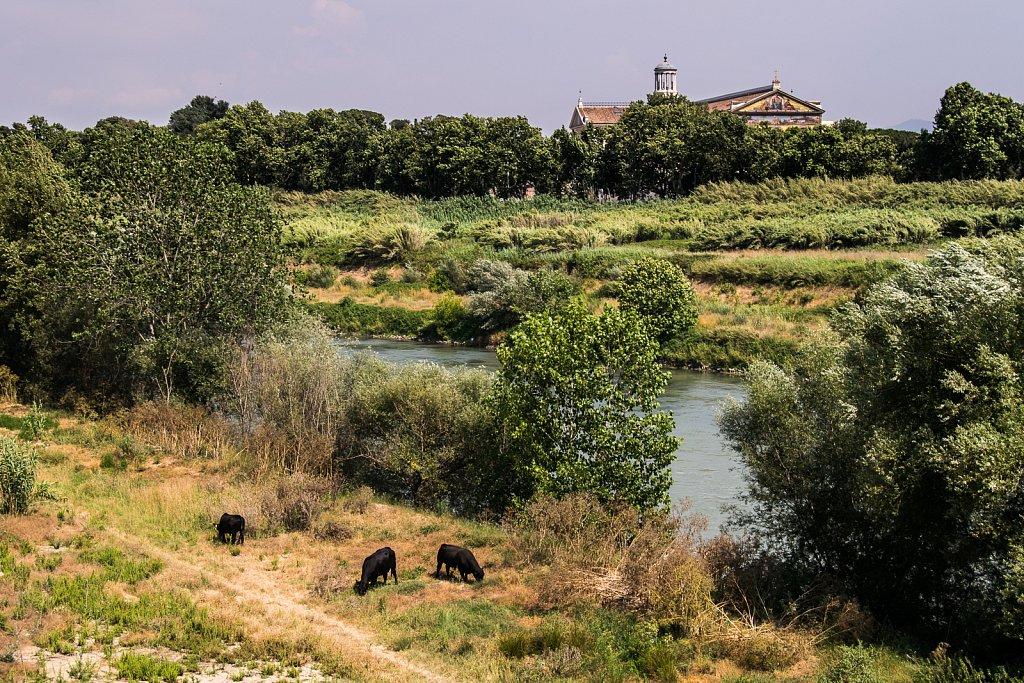 Vor der Aurelianische Mauer