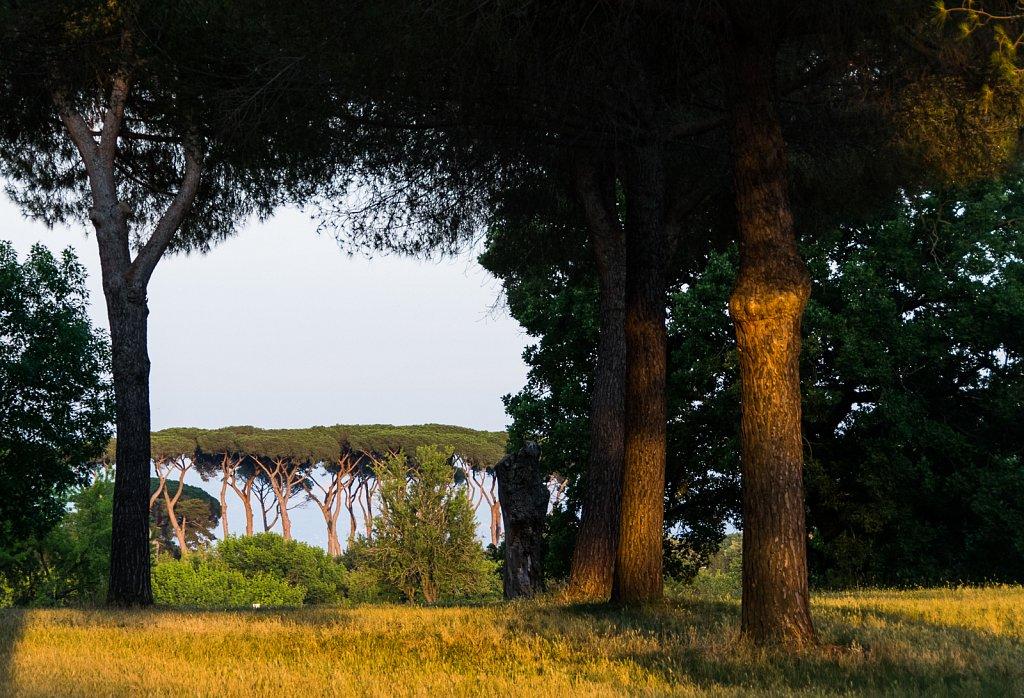Im Park der Villa Doria Pamphili